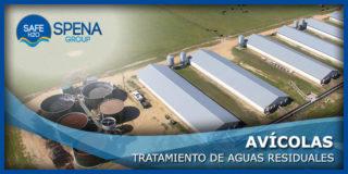 Tratamiento de Aguas Residuales para Avícolas